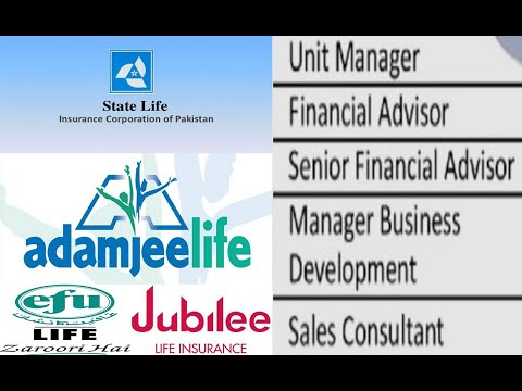 Hierarchy Of Designations In Insurance Companies   Adamjee Life   Financial Advisor   Unit Manager
