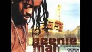 BEENIE MAN - SKETEL SHADOW (CATALOG RIDDIM) DI GENIUS [MAY 2010]