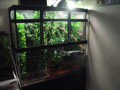 how to build your own chameleon cages