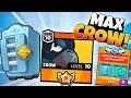 BIG MEGA BRAWL BOX OPENING & MAXING LEGENDARY CROW! | Brawl Stars | MAX BRAWLER CROW GAMEPLAY