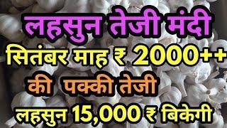 यह लो लहसुन भाव में आई पक्की तेजी   Lahsun mandi bhav   Garlic Market