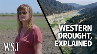 Why the Western Drought Will Have Major Ripple Effects   WSJ