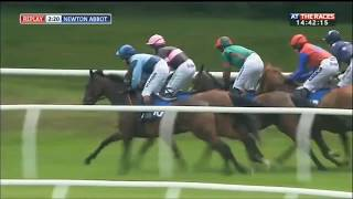 Thrills and spills: Horse makes a spectacular early exit