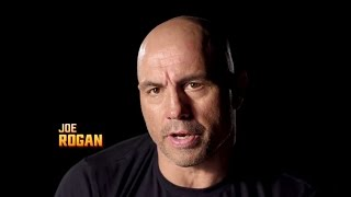 Fight Night Portland: John Lineker vs John Dodson - Joe Rogan Preview