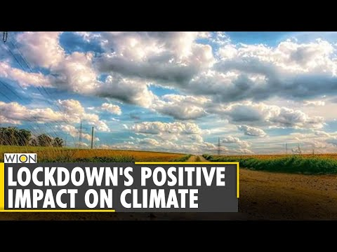 COVID-19 lockdown's positive impact on environment | World News | WION News