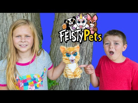 The Assistant and Batboy Hunt for Fiesty Pets with Officer Smalls and PJ Masks