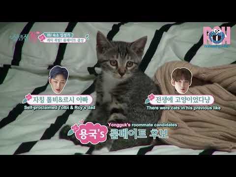 [ENG SUB] Yongguk choosing between Kenta and Hyunbin (잘봐줘 JBJ CUT)