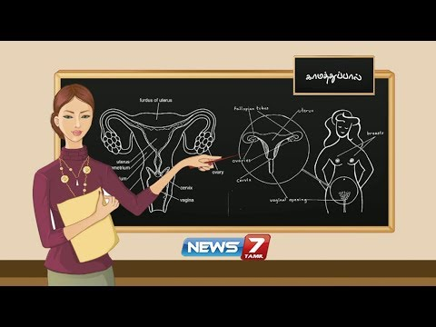 காமத்துப்பால் | Documentary about Sex Education | News7 Tamil