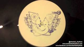 Gush Collective - Try Harder // Gush Collective (2000)