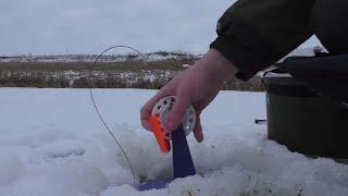 Зимняя Рыбалка в январе 2020. В поисках рыбы