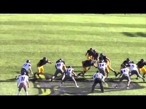 2013 MNSU Offensive Player of the Year