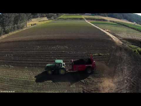 Spreading Organic Mulch Sydney Australia