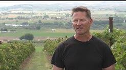 Idaho Wineries Use Laser Bird Repellent to Protect Crops from Birds