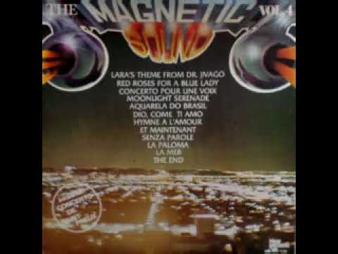 THE MAGNETIC SOUNDS VOLUME 4