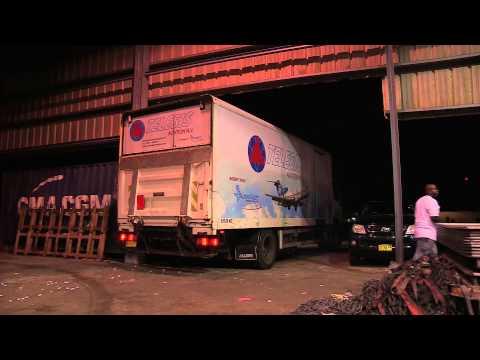 Telesis Cargo Services
