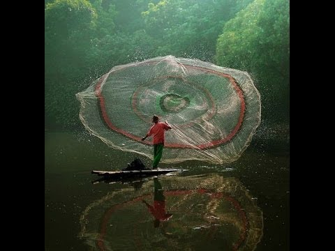 Хотите узнать больше о запрете на рыбную ловлю в украине?. Тогда. Запрет на вылов рыбы, а также других водных биоресурсов применяется с.