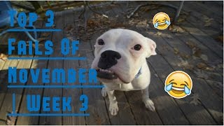 Top 3 Fails Of November   Week 3