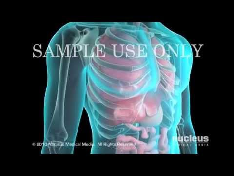 Diagnostic tissue sampling of the Gastrointestinal, Hepatic and Biliary Systems