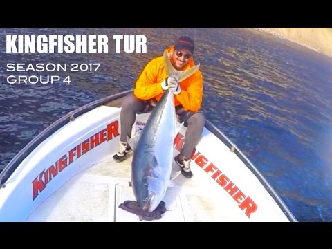 Kingfisher tur | Isla Robinson Crusoé | Yellowtail fish 46 Kg | Jigging and Popping | 2017 | Group 4