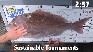 Sustainable Tournaments