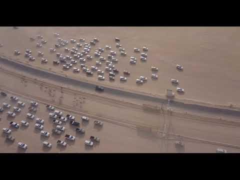 Kuwait Camel Race