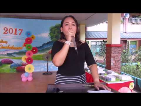Moises Salvador Elementary School PARANGAL 2017