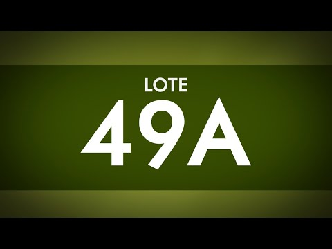 LOTE 49 A