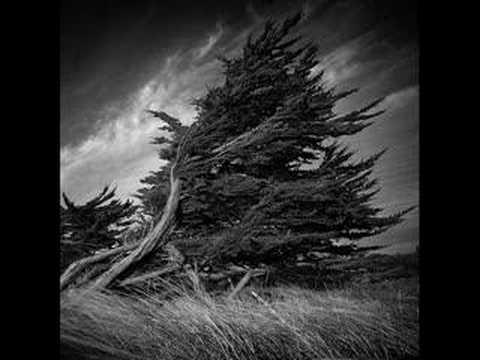 Arcana, God Of The Winds