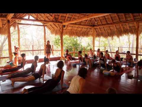 Practicum for Meghan Currie 200 Hour Yoga Teacher Training 2016