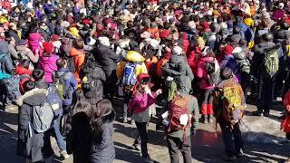 태백산 눈축제 엄청난 인파에  놀라다 쿵짝 꿍짝 관광객…