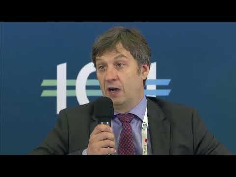 Ukrainian Financial Forum 2017 - 5th panel - Relaxation of FX controls, capital markets regulation