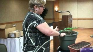 Container Gardening Tips - Clip 2 of 3