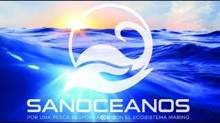 SANOCEANOS: Plantados Ecológicos - Eco FADs (Fish Aggregating Devices)