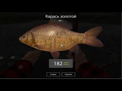 Русская Рыбалка 4, Тайна бамбуковой удочки (что делать если сломалась удочка)