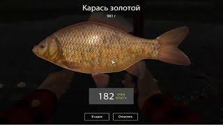 Русская Рыбалка 4 (Russian Fishing) Карась золотой на Комарином