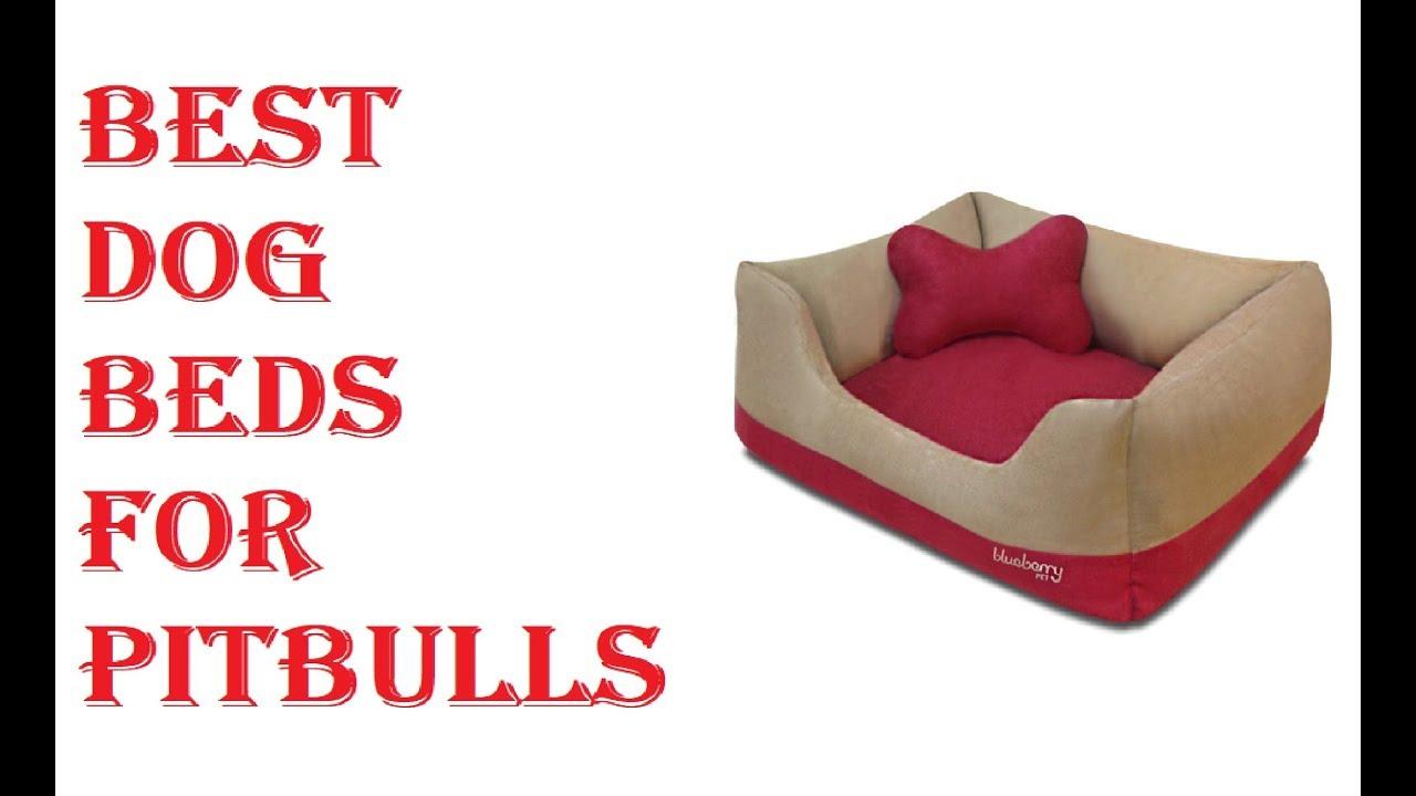 Best Dog Beds For Pitbulls 2018   YouTube