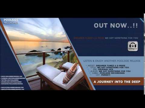 PSR0011 // Dreamer Tunez & G Mode // We Got Something For You // Original Mix