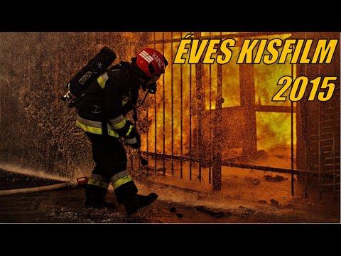 Éves összefoglaló FKI 2015
