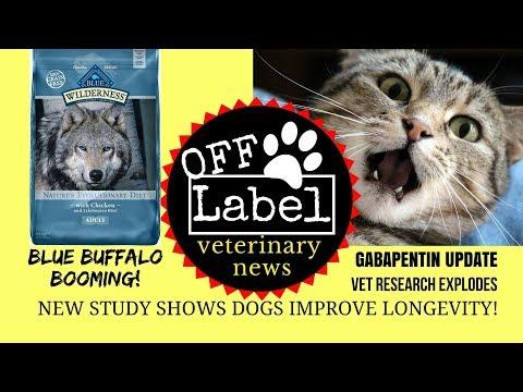 Vet Research Explodes, Blue Buffalo Booming, Dog Owners Live Longer, Gabapentin Update