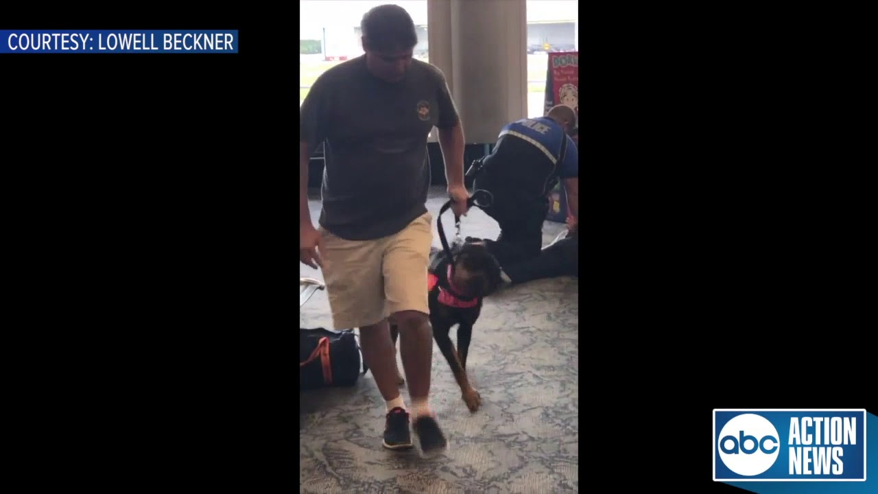 WHITE MAN WITH DOG making scene at Airport because of flight delay