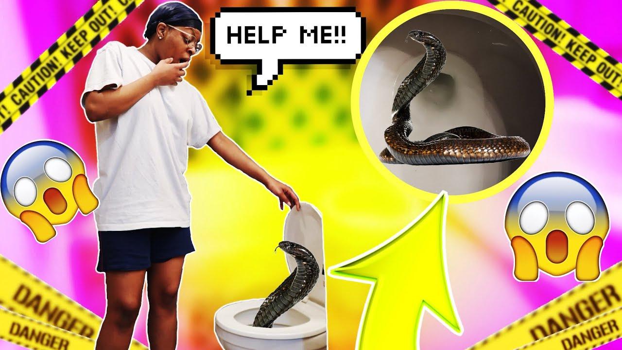 SNAKE IN TOILET PRANK ON GIRLFRIEND!! 🐍🚽   BADDD IDEAA ...