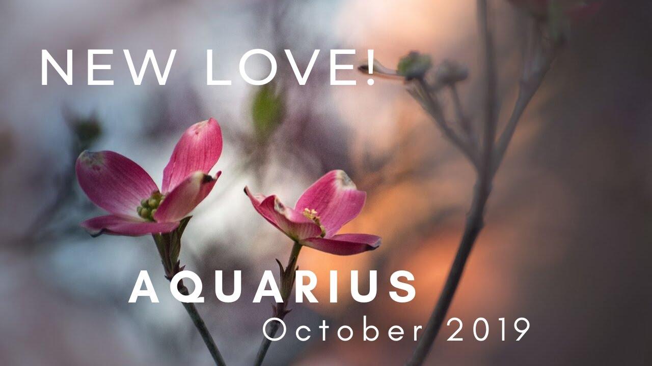 aquarius october 2019 love tarot reading