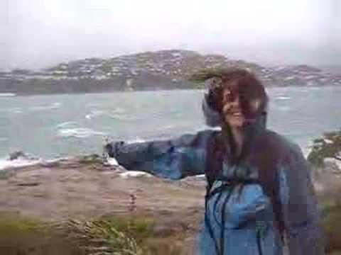 Breezy Day In Wellington