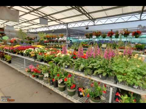 Green Thumb Nursery Hardware Patio Ventura Ca Plant