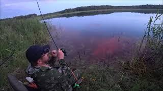 Насадка которая спасла рыбалку! Или как рыбачить в сильно заросшем водоеме. Квакшино .