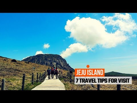 7 TRAVEL TIPS TO JEJU ISLAND | SOUTH KOREA