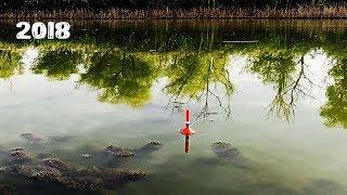 Ловля карася осенью На что ловить карася осенью Рыбалка 2018
