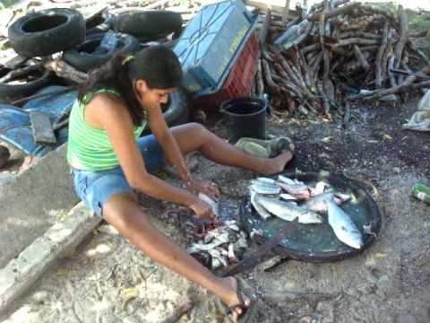 Jim & Caroles Mexico Adventure: Pelicans & People at Petatan