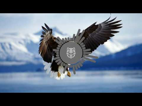 Macklemore & Ryan Lewis - Wing$ - Lost Frequencies Remix