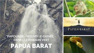 Papouasie - Nouvelle-Guinée - Ormu, le paradis vert - Papua Barat